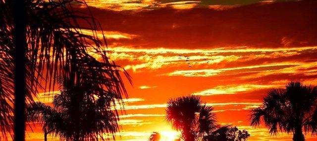 sunset mosn